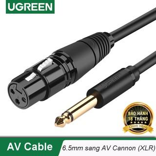 Cáp chuyển đổi từ 6.5mm sang AV Cannon (XLR) âm cho microphone, stereo, mixer, amplifier UGREEN AV131 - Hàng chính hãng