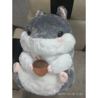 Sale sốc cuối năm!!! Chuột hamster size lớn siêu cute
