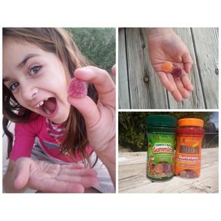 Viên nhai Vitamin va khoa ng châ t vi hoa qua cho trẻ puritan s pride Children s Multivitamins Gummies 60 viên 4