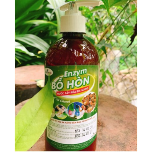 Nước tẩy rửa enzym bồ hòn quế 500ml vòi nhấn - nói không với hoá chất