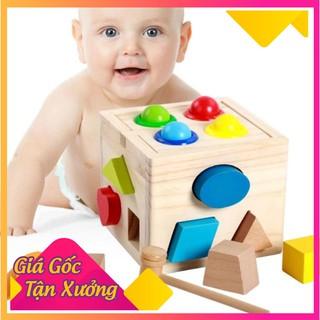 [HCM]-HOT- Hộp thả hình khối kết hợp đập bóng – đồ chơi gỗ thông minh