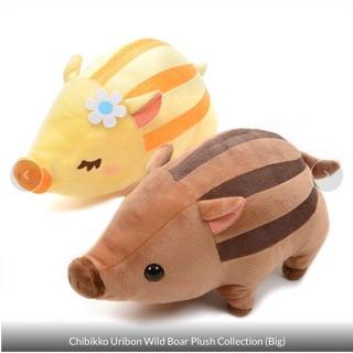 Amuse – Cặp đôi 2 em lợn rừng Chibikko Uribon