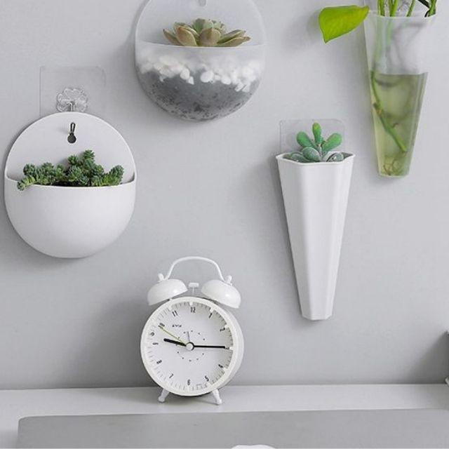 ĐẸP ] Lười treo tường nhựa treo tường xanh,treo hoa chậu thủy canh, chậu  hoa treo tường kiểu bình hoa mẫu tròn và dài | Shopee Việt Nam