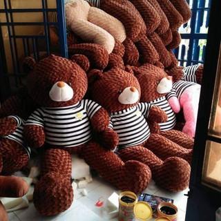 [Sale Off 50%] Gấu teddy kèm ảnh thật [áo sơ mi trắng nữ]