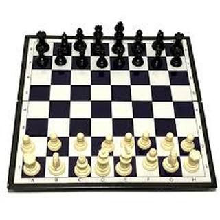 cờ vua nam châm 29cmx29cm