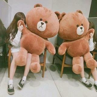 Gấu Brown siêu bự