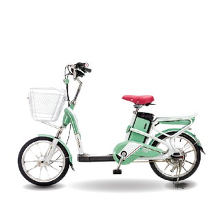 Xe đạp điện Aima ED318 2019