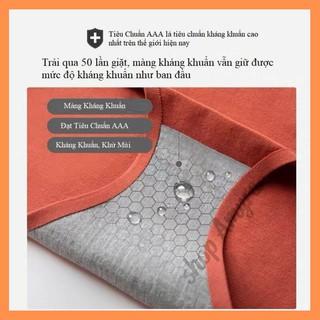 Hình ảnh (Được chọn màu) Quần Lót nữ Cotton100 Tàng Hình không Đường May Diệt Khuẩn - Amyra QL01-3