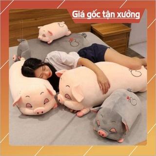 Gấu Bông Lợn [_GIÁ GỐC TẬN XƯỞNG_] Heo Mắt Híp,Lợn Buồn Ngủ Co Dãn 4 Chiều bông nhồi bên trong 100% là bông gòn 3D thumbnail