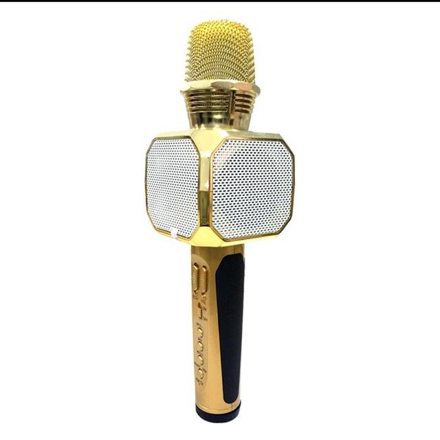 Mic hát Karaok SD 10 (Chính hãng),Loại XỊN