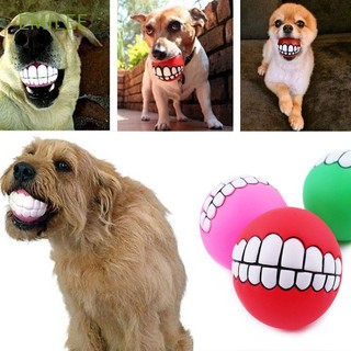 Hot New Pet Funny Training Dog Play Toy