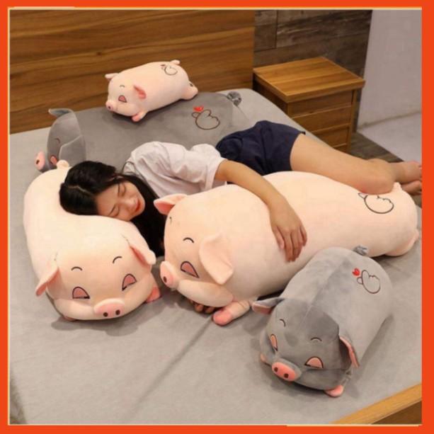 Gấu Bông Heo Mắt Híp, Lợn Phê Cần Ngủ Đờ Đẫn,Gối Ôm Heo Ngủ Không Chăn Đáng Yêu Đủ Size 35-110cm