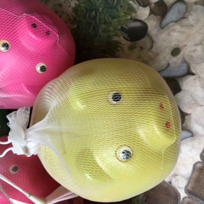 Lợn Nhựa tiết kiệm tiền cho bé