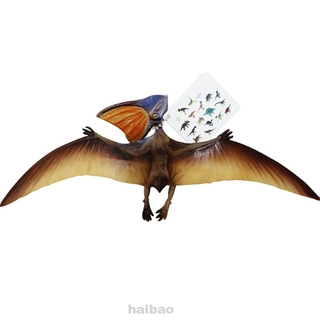 Museum Jurassic Miniature Lifelike Educational Soft Pteranodon World Park Simulation Animal Dinosaur Model