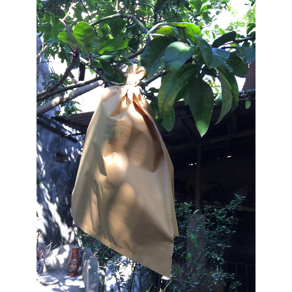 Combo 50 túi bọc trái (bưởi, nhãn,....) giấy vàng 30x36 cm - 2856894 , 1195912630 , 322_1195912630 , 59000 , Combo-50-tui-boc-trai-buoi-nhan....-giay-vang-30x36-cm-322_1195912630 , shopee.vn , Combo 50 túi bọc trái (bưởi, nhãn,....) giấy vàng 30x36 cm