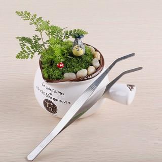 Nhíp làm nhà búp bê, tiểu cảnh, bonsai Minidoll thumbnail