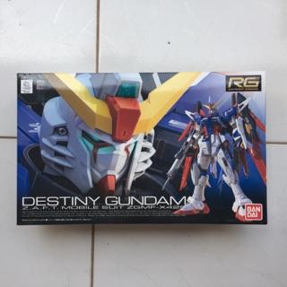 RG 11 Destiny Gundam