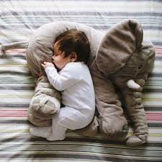 gối voi cho bé Siêu rẻ