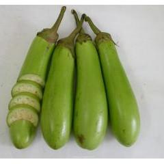 BỘ 06 Hạt giống cà xanh lai F1 TẶNG 2 phân bón