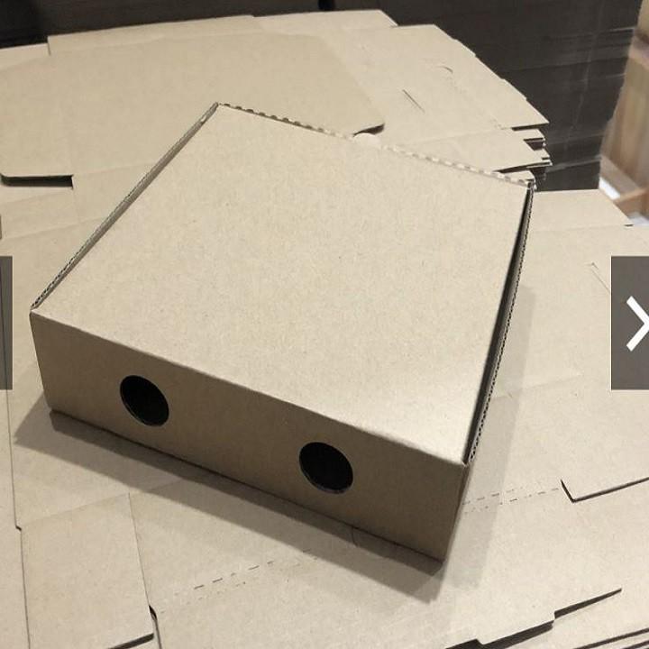Freeship - Hộp carton đựng bánh Pizza - 28x28x4cm