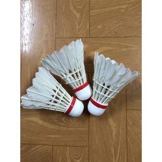 Cầu lông đánh vợt chất liệu lông vịt quả cầu lông thumbnail