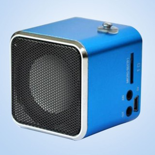 Digital MP3 Music Player Micro SD TF USB Disk Speaker FM Radio 3.5mm Line IN