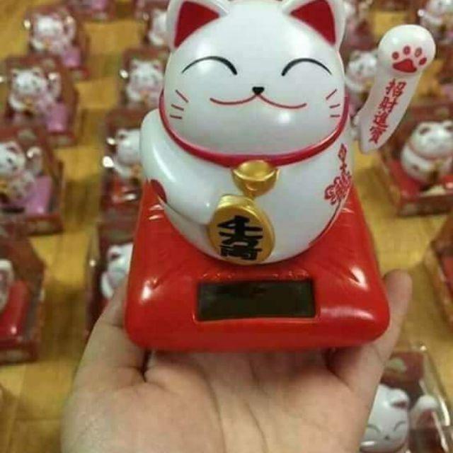 Mèo thần tài vẫy tay may mắn - 3528995 , 736578231 , 322_736578231 , 70000 , Meo-than-tai-vay-tay-may-man-322_736578231 , shopee.vn , Mèo thần tài vẫy tay may mắn