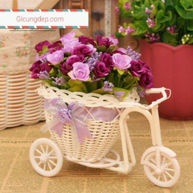 Giỏ hoa hồng xe đạp