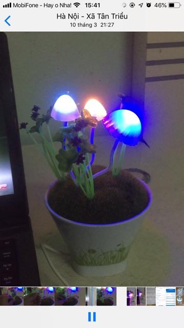 [ XẢ KHO 3 NGÀY] Đèn nấm avata cảm ứng rung, đèn ngủ để bàn, đèn ngủ cắm tường, đèn ngủ cảm ứng ánh sáng, đèn ngủ giá rẻ