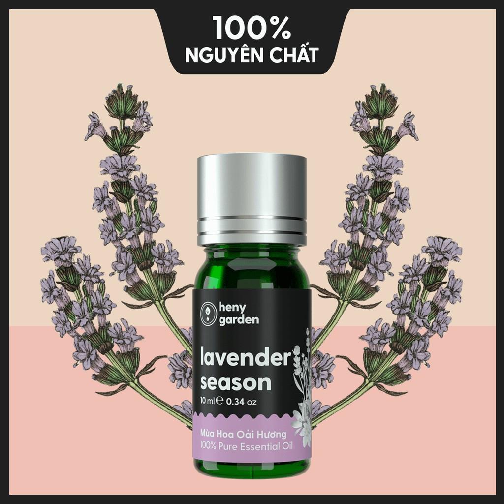 Tinh Dầu Thiên Nhiên Mùa Hoa Oải Hương (Lavender Season) – Xông Thơm Phòng – 10ml – [Tặng 3 Mẫu Thử Với Đơn Hàng Bất Kì]