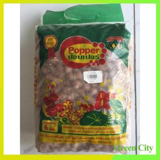 Đất nung Popper cỡ XXL loại 6 lít – Green City