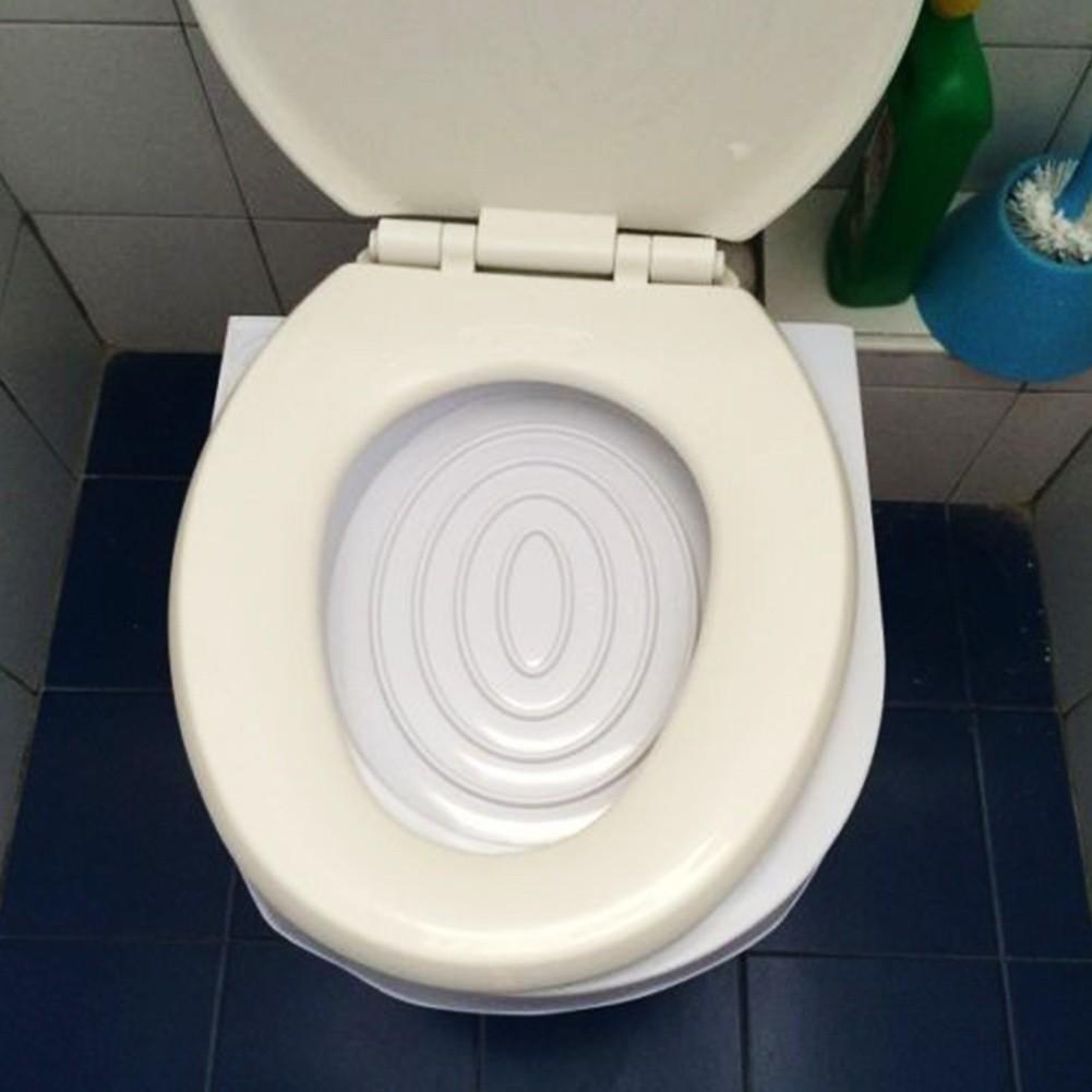 Đồ tập đi vệ sinh đặt trên toilet cho mèo