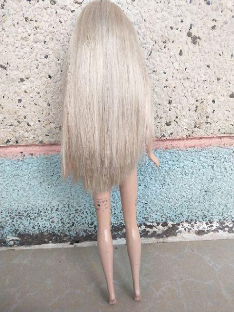 Búp bê barbie xinh