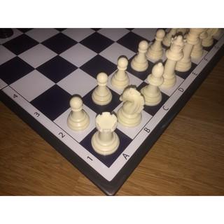 FREESHIP_ Bộ cờ vua tiêu chuẩn quốc tế có nam châm SATO040