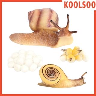[KOOLSOO] Plastic Lifelike Snail Growth Cycle Models Kit Life Cycle Insect Model Kids Toys