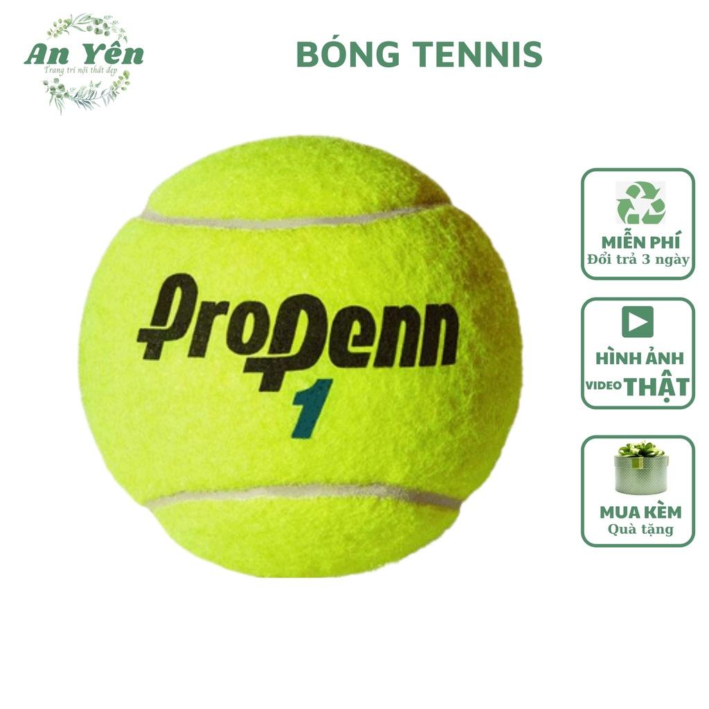 Bóng tenis bóng tennis tập luyện
