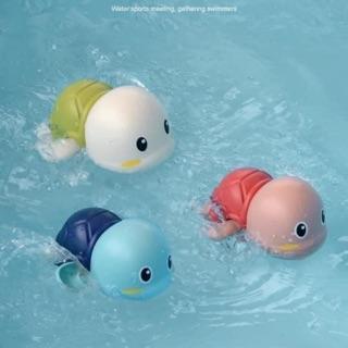 Rùa cót bơi cho bé