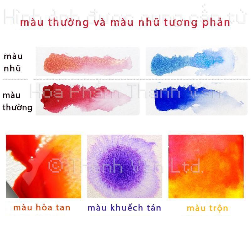 Bộ màu nước cao cấp PAUL RUBENS dạng nén - Artist Grade 12/24/48 màu