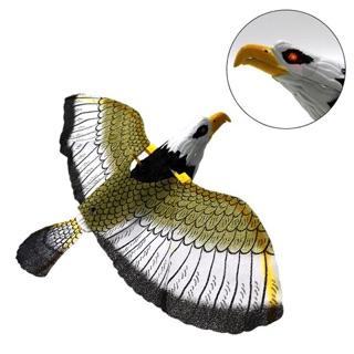 Chim đại bàng vỗ cánh, có tiếng kêu