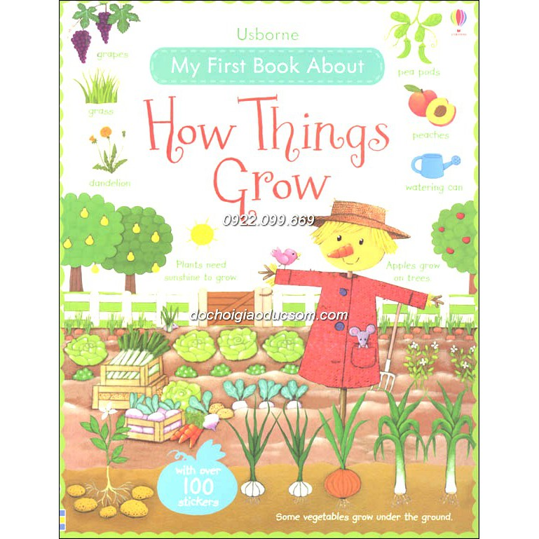 Usborne sticker book - my first book about How Things Grow