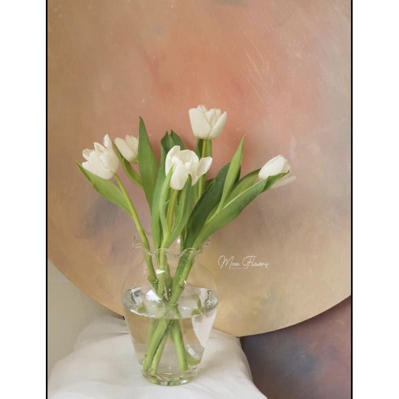 Lọ hoa thủy tinh chum miệng bèo