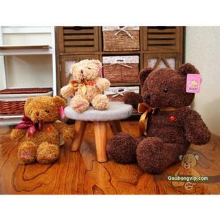 Gấu Teddy nơ lông xù