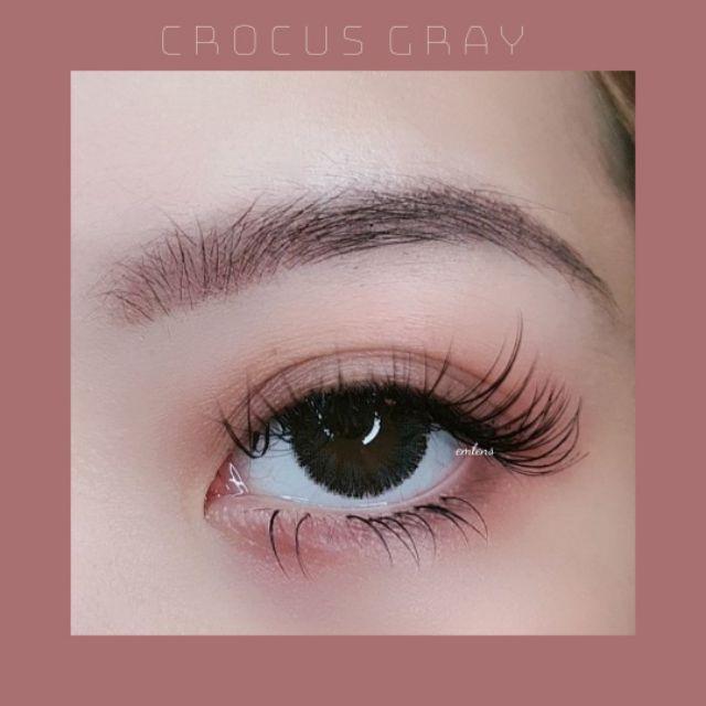 [ FOLLOW NGA ] Kính áp tròng Crocus Gray 2019