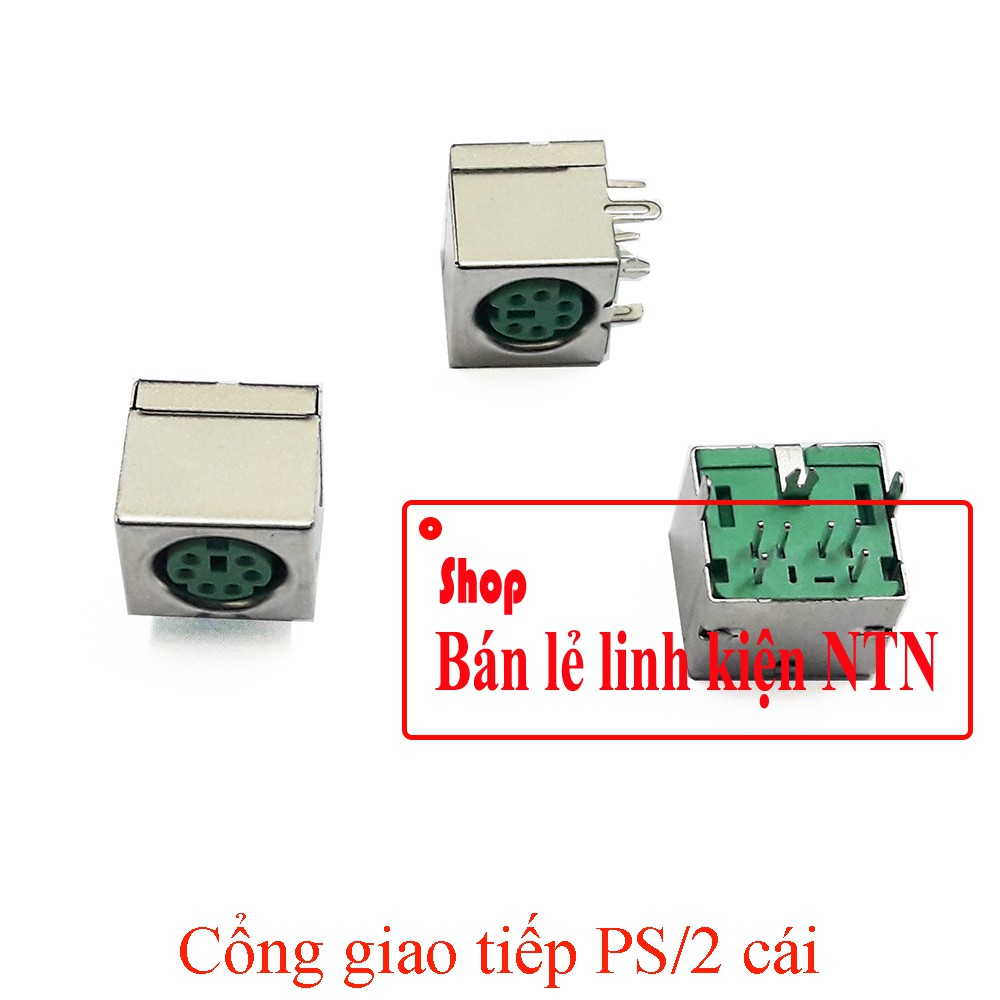Cổng giao tiếp PS/2 cái