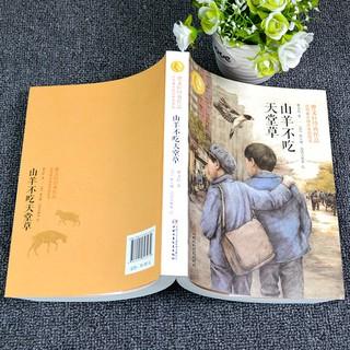 Mô Hình Đồ Chơi Nhân Vật Hoạt Hình Nhật Bản