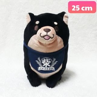 Gấu bông chó SHIBA.