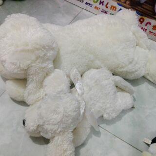 Gấu chị Lethuynguyen