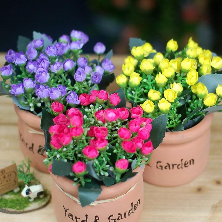 Chậu hoa để bàn - chậu gốm hoa nụ - 10021429 , 400483743 , 322_400483743 , 105000 , Chau-hoa-de-ban-chau-gom-hoa-nu-322_400483743 , shopee.vn , Chậu hoa để bàn - chậu gốm hoa nụ