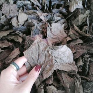 200gr Bột thảo dược xông vùng kín lá trầu không nguyên chất - , Bột Handmade 5