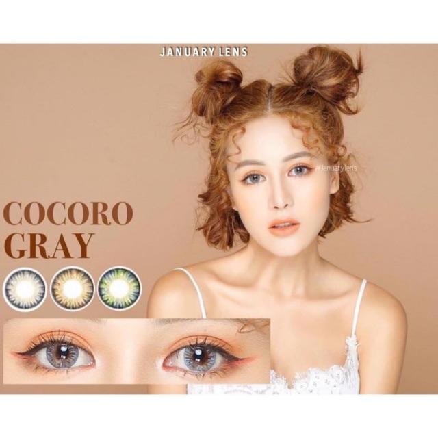 Lens Cocoro gray (có độ cận)